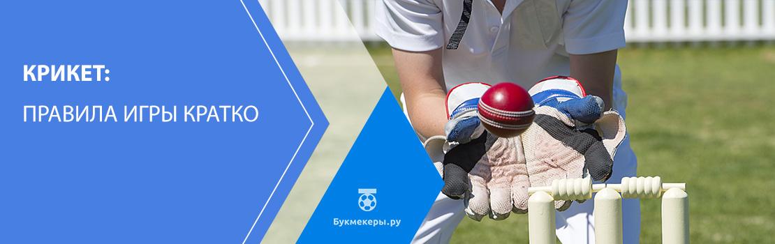 Крикет (игра): правила игры кратко